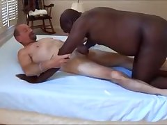 Blk bear engulfing wht dad pecker
